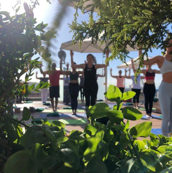 yoga, cuerpo y mente saludable, alimentación consciente,